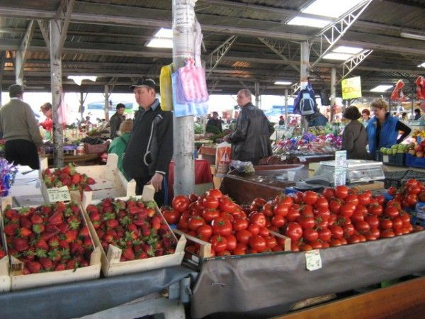 Controale in pietele din Timisoara