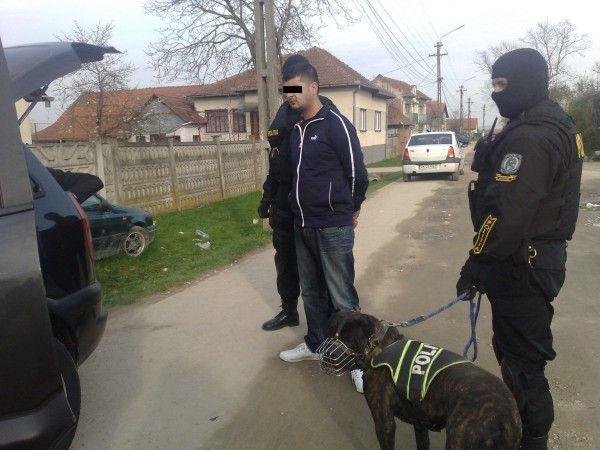 Suspect retinut in urma descinderilor din Lugoj
