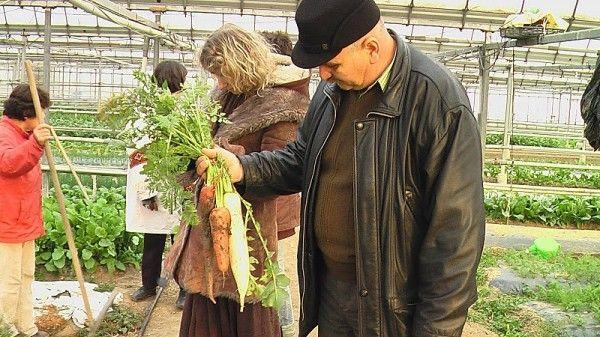Ioan Jivu, primul agricultor din Romania care a intrat în programul de susţinerea a unei agriculturi ecologice