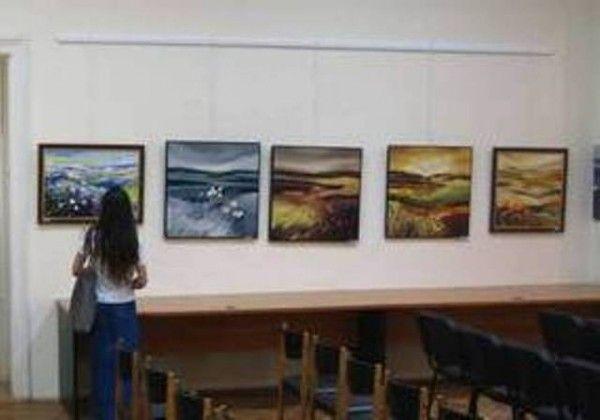 Expoziţia arădenilor poate fi vizită timp de o lună FOTO: FAN