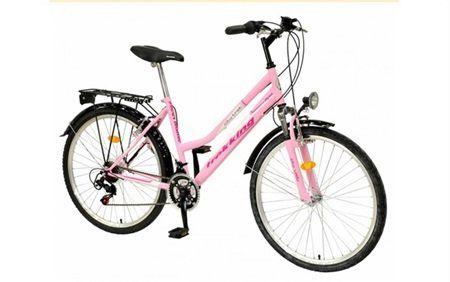 Hot filmat in timp ce fura o bicicleta cu... buletinul! (5)