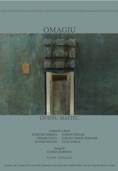 expozitie  Ovidiu Maitec222